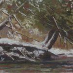 "Saugeen River Snag | Pastel | 4"" x 10.5"" | $220"